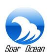 唐山逍航货运代理有限公司的企业标志